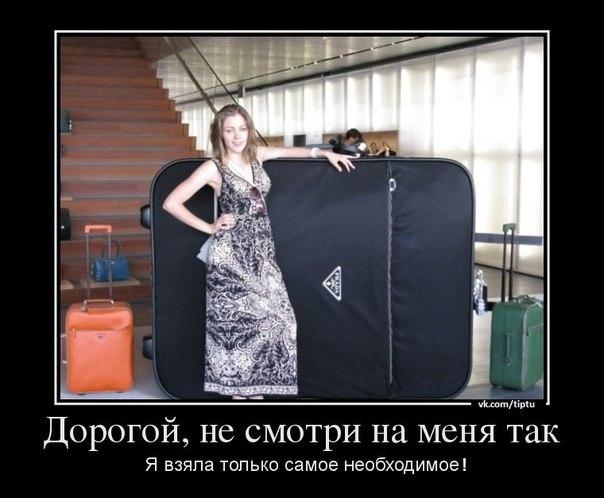 Пакуйте чемоданы рюкзаки фирмы шнайдер