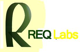 Изображение к Краткий обзор конференции Req Labs 2011